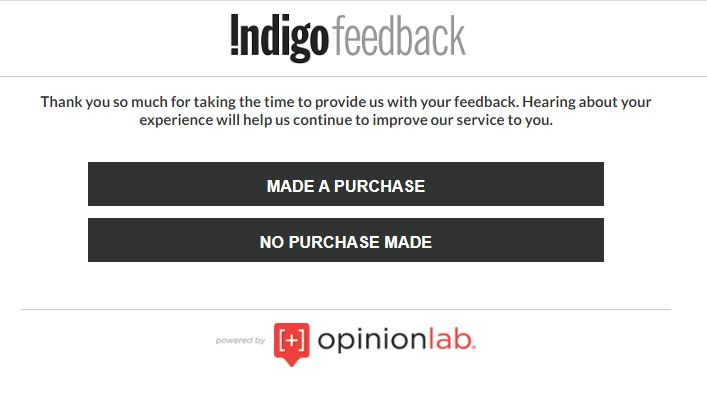 Indigo Customer Survey